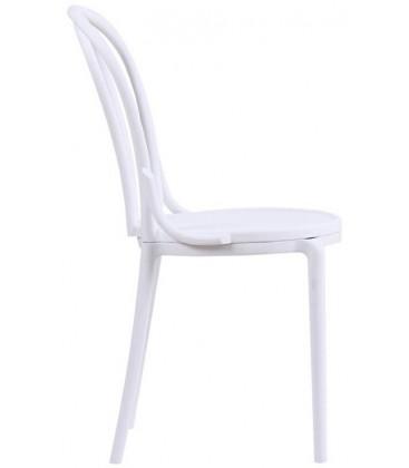 Krzesło Toni Modesto