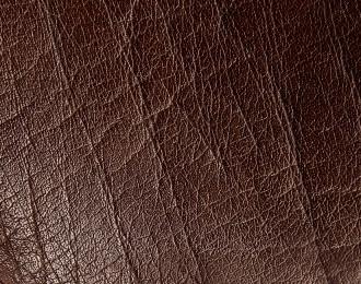 skóra naturalna brąz